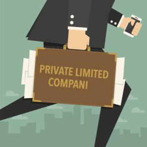 Private-Limited-Company